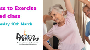 Access to Exercise Seated Class
